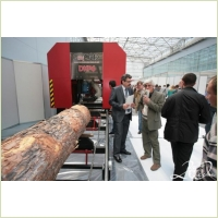 Выставка «ЭКСПОДРЕВ» в этом году бьет все рекорды предыдущих лет